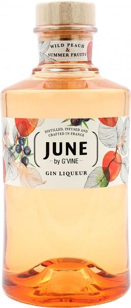June G-Vine Gin Liqueur Wild Peach & Summer Fruits