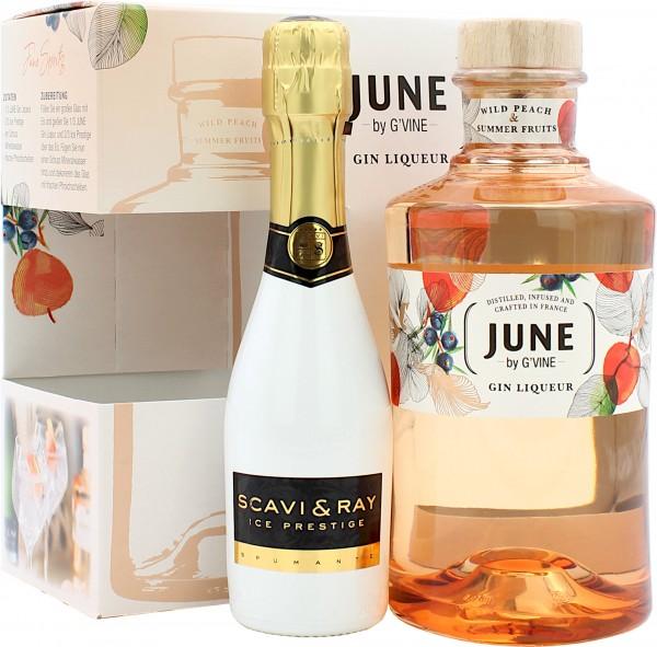 June G-Vine Gin Liqueur Geschenkset mit Scavi & Ray Ice Prestige